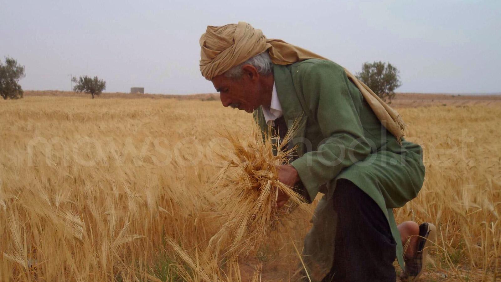 المجال الفلاحي بالبلاد التونسية – جغرافيا - الثالثة آداب واقتصاد وتصرف